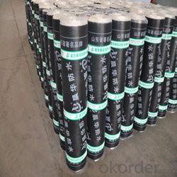 SBS modified bitumen waterproof membrane