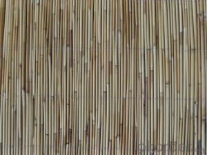 Reed Garden Fencing Decoration Black Reed for Decoration