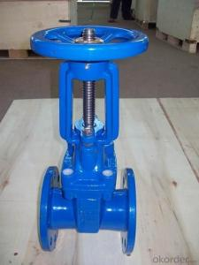 Rising Stem Resilient Seated Gate Valve