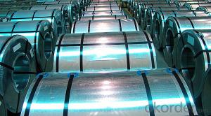 GALVANISED STEEL IN COILS