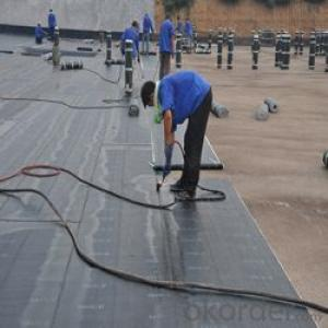 APP modified bitumen waterproof membrane