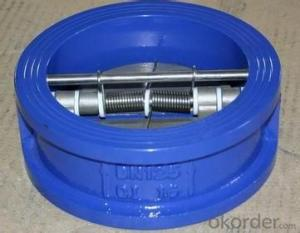 Disc Wafer Check Valve