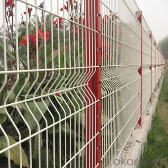 Vinyl Coated Welded Decorative Garden Mesh Fencing wigh High Price