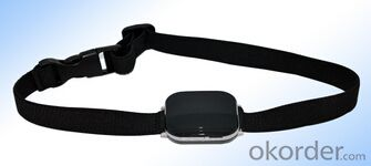 Pet GPS Tracker 19Q