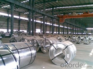 Prepainted Galvanized Steel Sheets In Coils