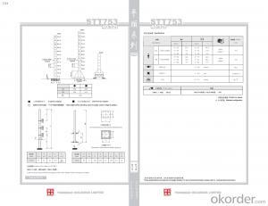 YONGMAO STT753 tower crane