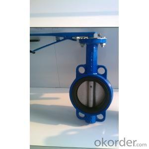 Ductile Iron Butterfly Valve DN300
