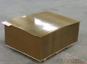 Printed Sheet for Tinplate and TFS in Metal Packaging