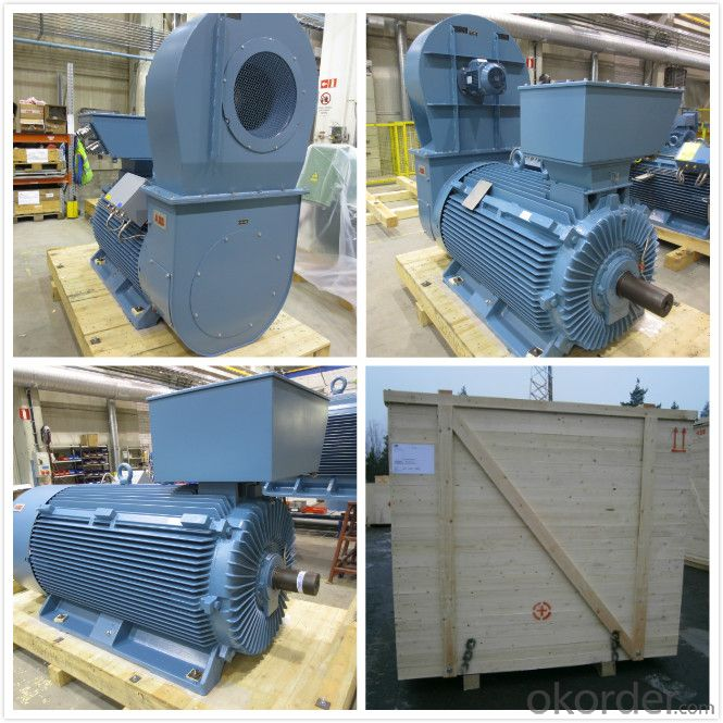 ABB AC Motor High Voltage HXR 500LP6