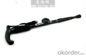 Color HC Alpenstock