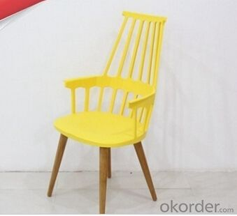 Garden Plastic Chair