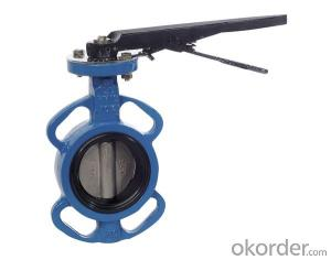 Ductile Iron Butterfly Valve DN100