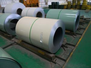 Color Coated Steel Coil (PPGI/PPGL) in High  Quality
