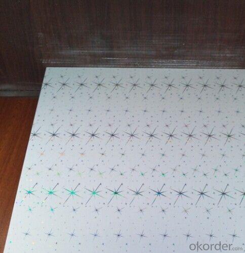 Interior PVC Ceiling Panel