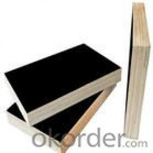 Black Film Eucalyptus Core Plywood 12mm Thickness