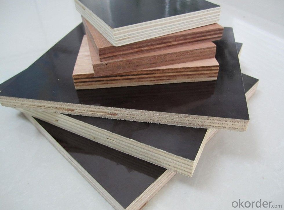Double Film Plywood 18mm Thickness