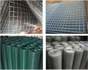 Welded Wire Mesh for Chicken Fence-1 X 1
