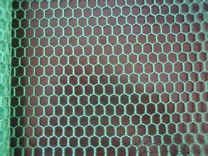 GALVANIZED HEXAGONAL WIRE MESH-BWG22 x 3/4