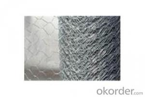 GALVANIZED HEXAGONAL WIRE MESH-BWG19x 1