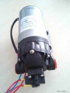 Micro Diaphram Pump(12V/24V)