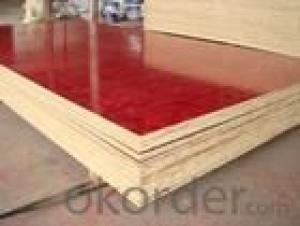 Brown Film Plywood 12mm Thickness
