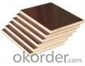 Brown Film Eucalyptus Core Plywood 15mm Thickness