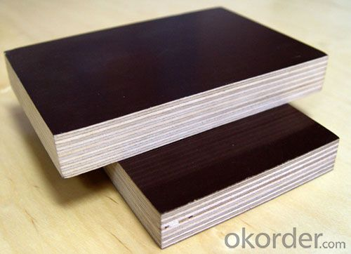 Black Film Eucalyptus Core Plywood 15mm Thickness