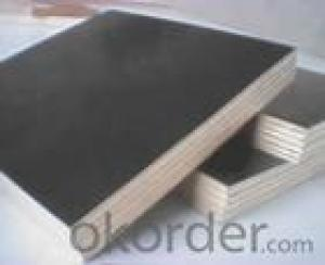 Black Film Plywood 18mm Thickness