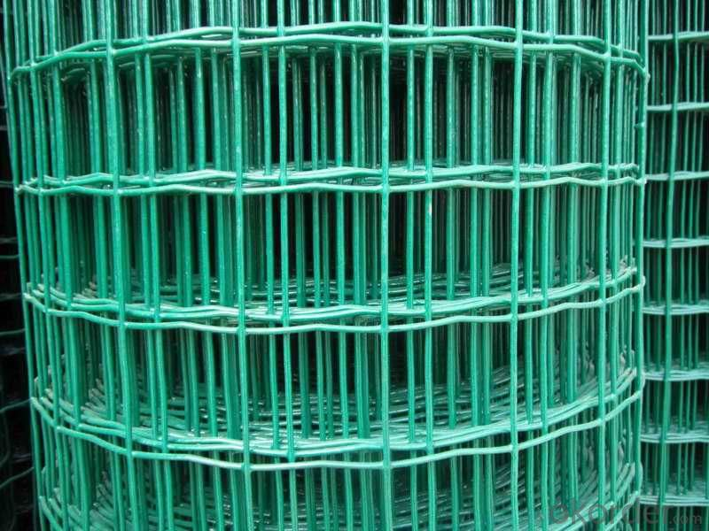 Holland  Wire  Mesh -- Best  Selling  Product