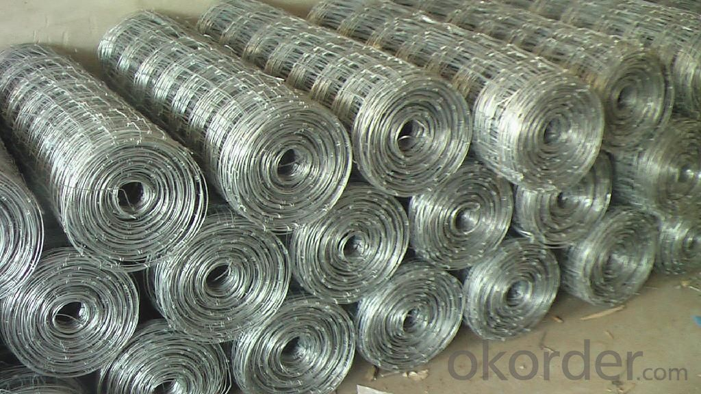 Wire  Mesh  for  Grassland -- Hot Selling