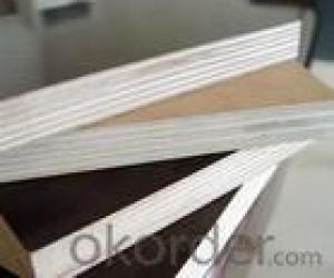 Double Film Plywood 15mm Thickness