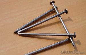 Polished Common Iron Nails