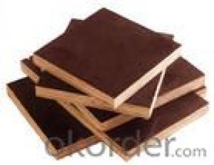 Brown Film Plywood 15mm Thickness