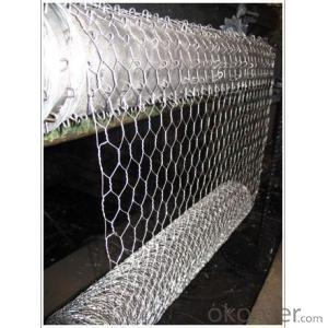 GALVANIZED HEXAGONAL WIRE MESH-BWG23 x 3/4
