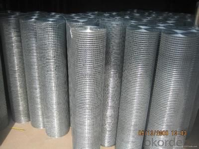 GALVANIZED HEXAGONAL WIRE MESH-BWG21 x 1/2