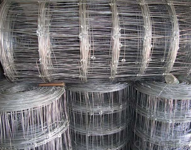 Wire Mesh for  Grassland  -- the Most Popular