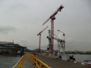 Weihai Wanfeng Tower Crane TC6015