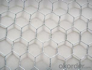 Galvanized Hexagonal Wire Mesh 0.8 mm Gauge
