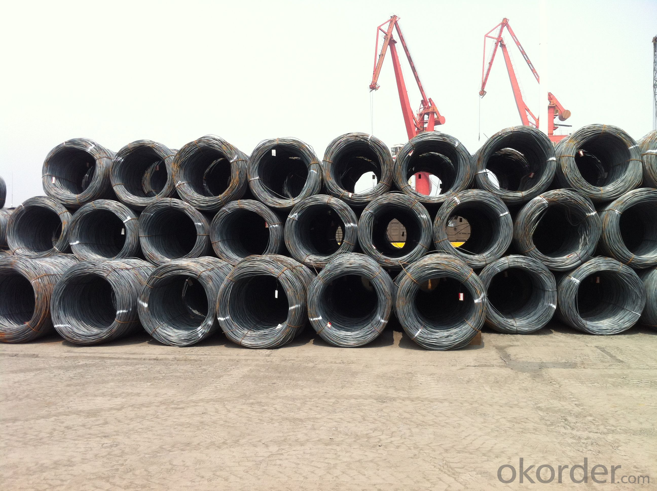 Hot Rolled Wire rods with Grade SAE1008B and High Quality