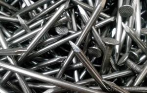 Hardware Fittings Polished Common Iron Nails with Different Sizes