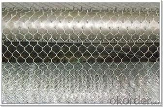 Hexagonal Wire Mesh 0.56 mm Gauge 4 Inch Aperture