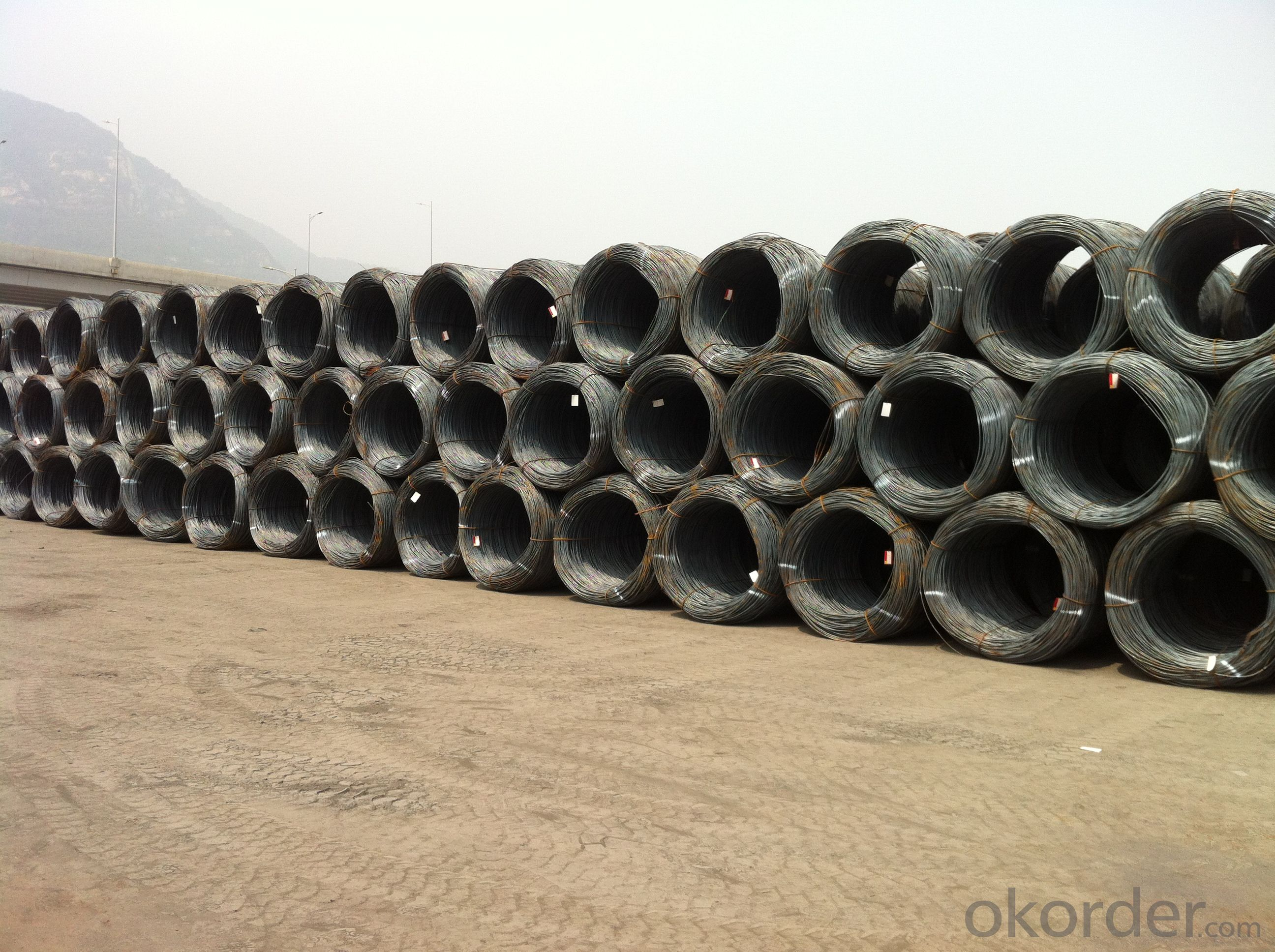 Hot Rolled Steel Wire Rods with Best Price in Grade SAE1006-1018