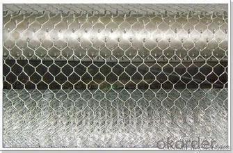 Hexagonal Wire Mesh 4 mm Gauge 1/2'' Inch Aperture