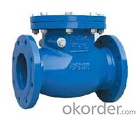 Double Flanged Soft Seal Swing Check Valve