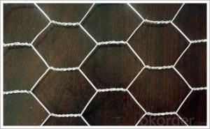 Hexagonal Wire Mesh 0.4 mm Gauge 3/8'' Inch Aperture
