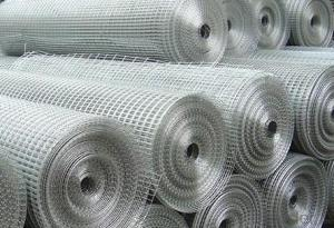 Welded Wire Mesh With High Quality In Roll