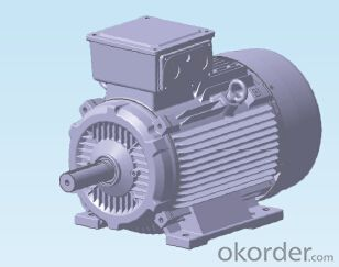 TECO  High Low Voltage AC Motor