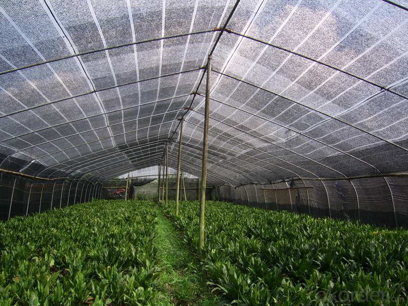 Knitted polythene sun shade netting Garden netting used in vegetable garden