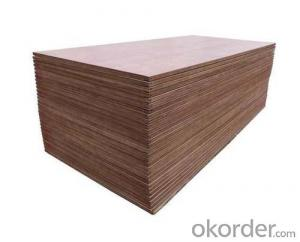 Plywood for Container Flooring Maintenance Use
