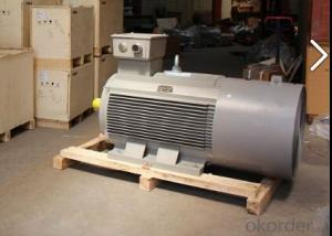Siemens 1LA8 High Low Voltage AC Motor